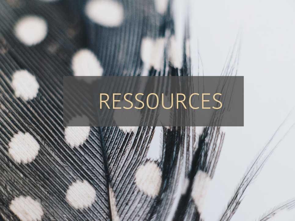 ressources business en ligne