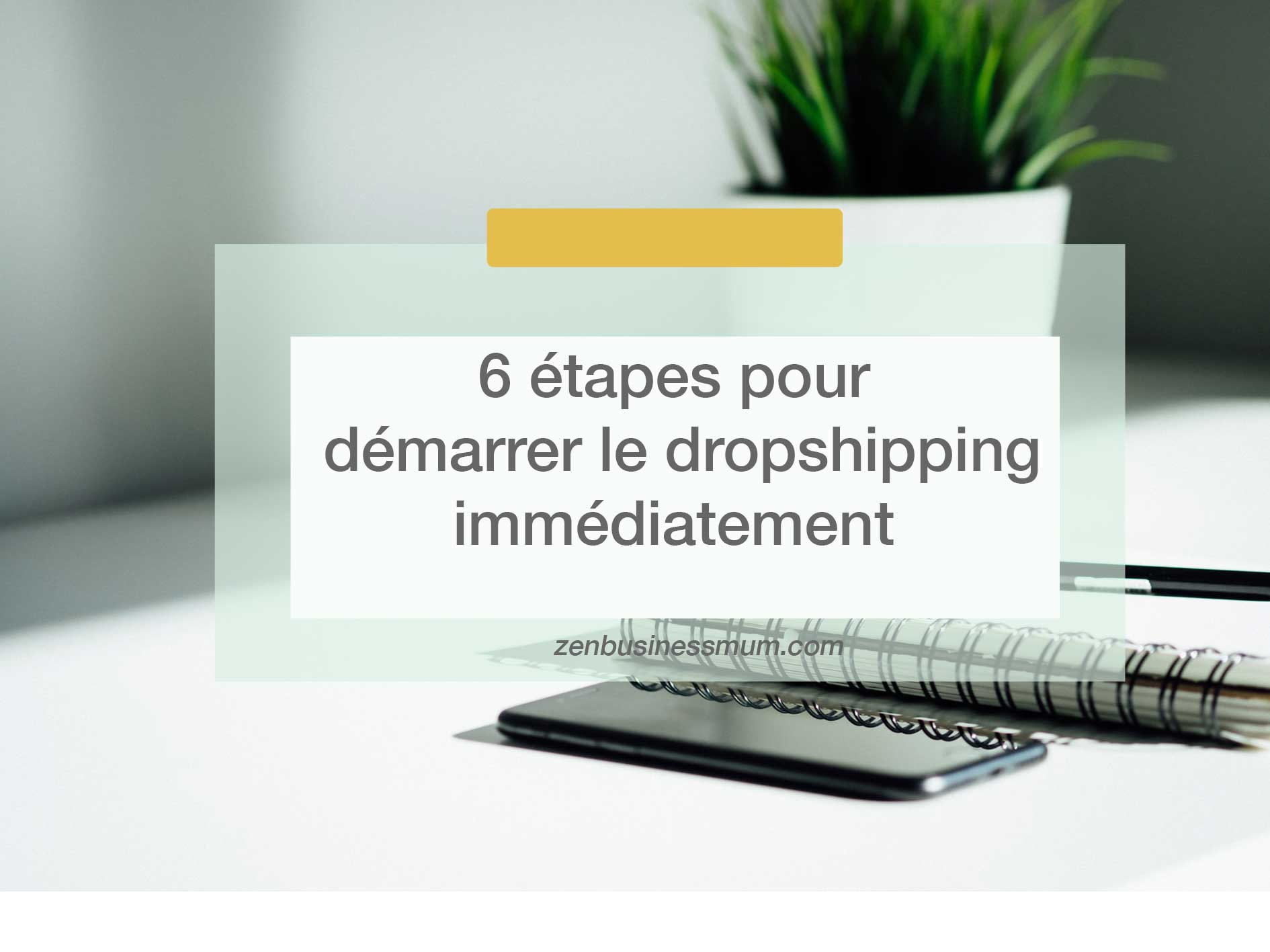 commencer dropshipping